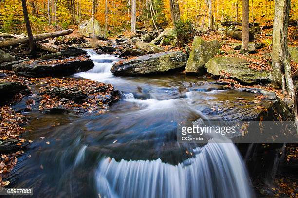 small waterfall in the autumn woods - ogphoto stock photos and pictures