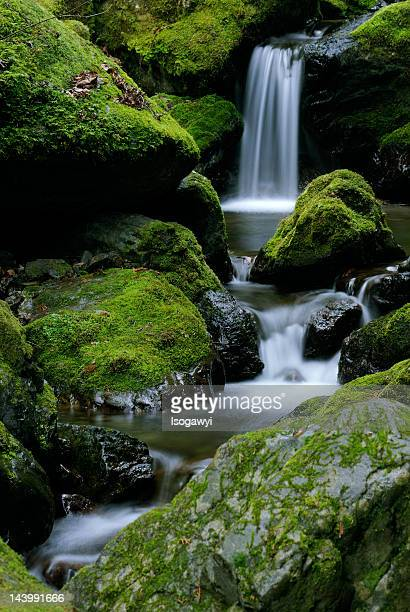 small waterfall - isogawyi stock pictures, royalty-free photos & images