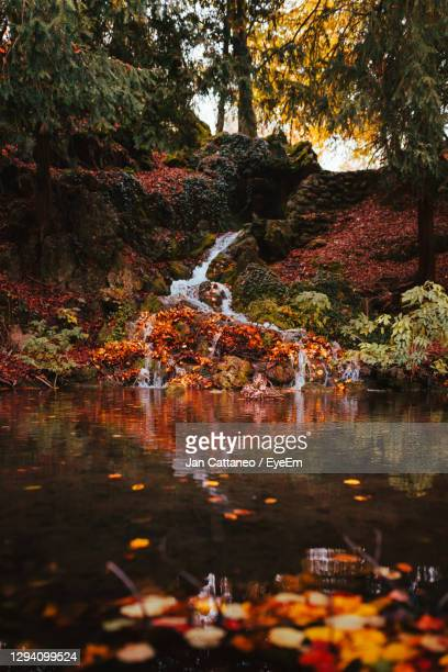 small waterfall with autumn foliage in the park of monza - monza stock pictures, royalty-free photos & images