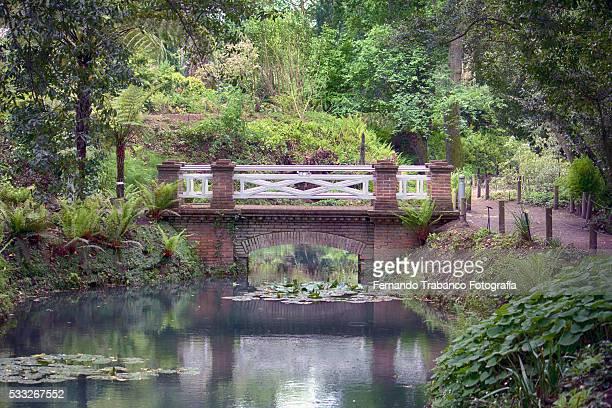 small wooden bridge over a lake