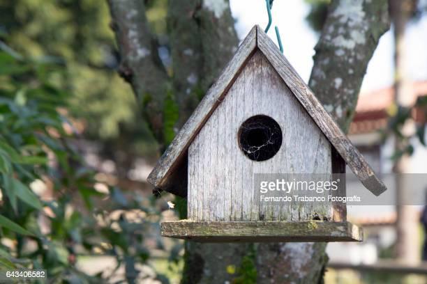 small wooden house with a hole that serves as a bird's nest - vogelhäuschen stock-fotos und bilder