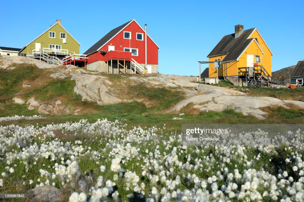 Small wooden houses with cottongrass in the foreground : Stock-Foto