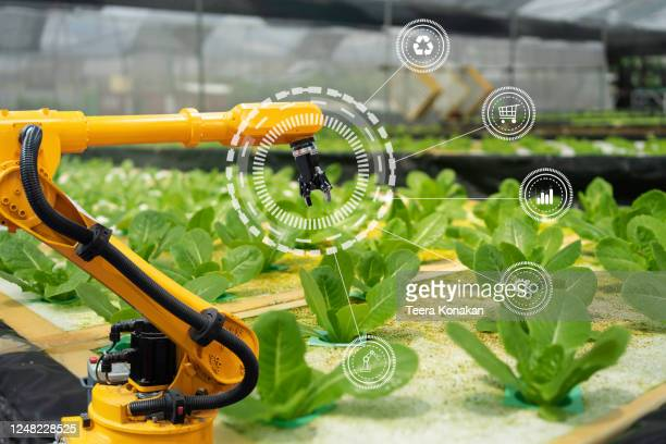 smart farm concepts. growing crops by using cutting-edge technology to manage the production of non-toxic vegetables. - harvest icon stock pictures, royalty-free photos & images
