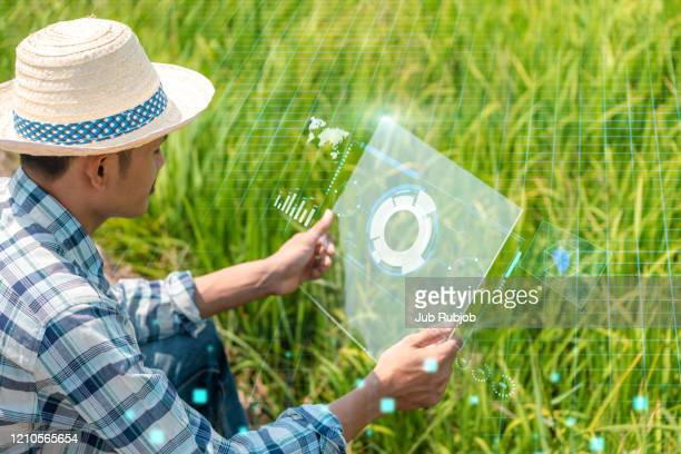 smart farming, agricultural technology and organic agriculture concept. agritech icons and messages on farmer holding smartphone in vegetable field. - スマート農業 ストックフォトと画像