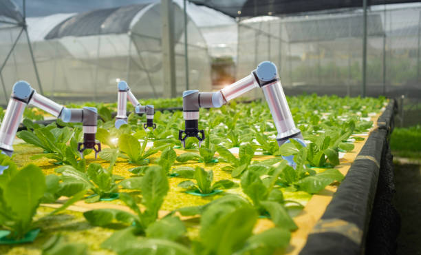 smart farming agricultural technology and smart arm robots are picture