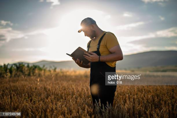 smart farming using modern technologies in agriculture - agronomist stock pictures, royalty-free photos & images