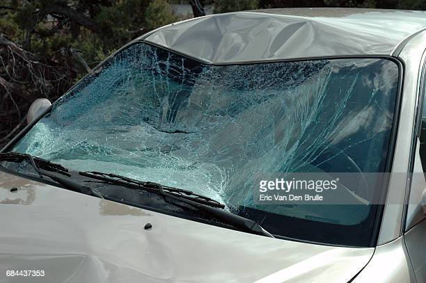 smashed car windshield - eric van den brulle stock pictures, royalty-free photos & images