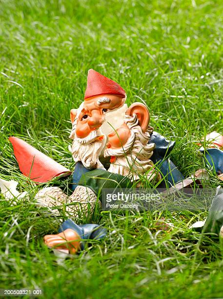 Smashed garden gnome on grass