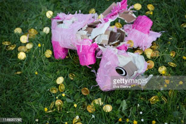 smashed up pink animal shaped pinata with scattered gold novelty coins on grass in a back yard - pinata stock pictures, royalty-free photos & images