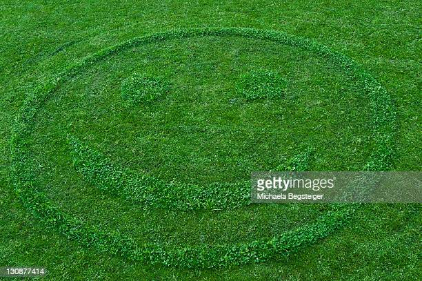 Smiley face on mowed meadow