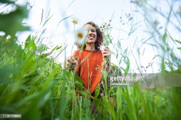 lächelnde erwachsene frau gesund blumenpflücken auf wiese - einzelne frau über 30 stock-fotos und bilder