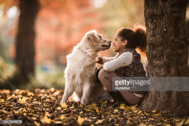 smiling african american girl enjoying with her golden retriever in autumn day. - autumn dog stock pictures, royalty-free photos & images