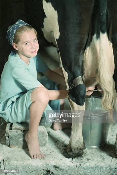 Smiling Amish Girl Milking a Cow
