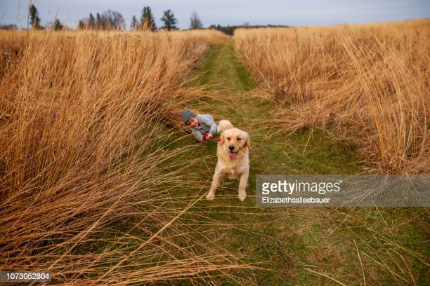 smiling boy being dragged through a field by his dog, united states - dragging stock pictures, royalty-free photos & images