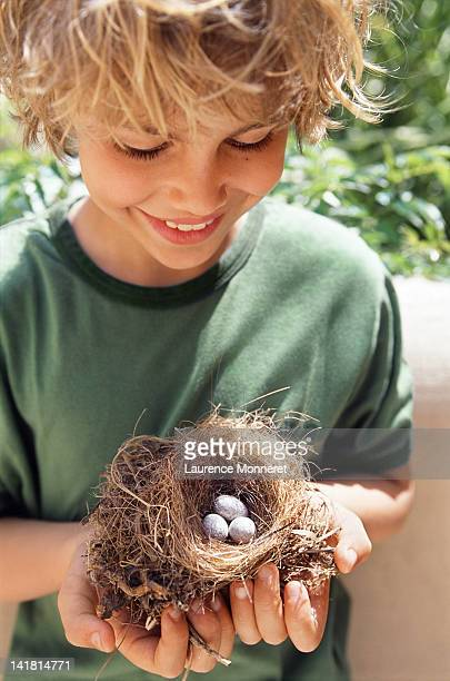 Smiling boy holding a nest with 3 eggs
