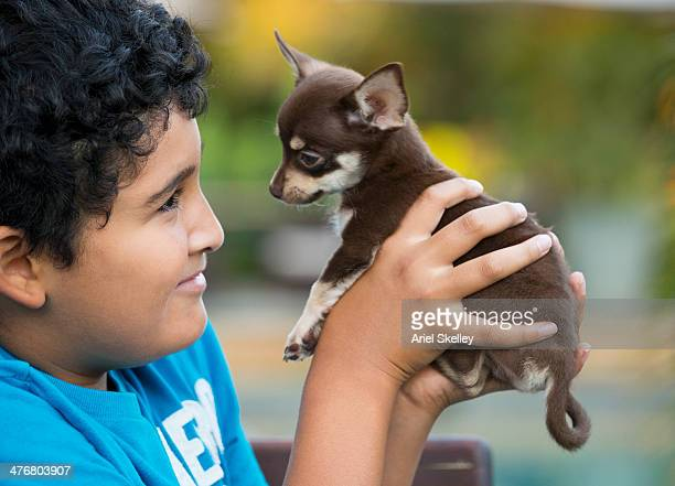 Smiling boy holding Chihuahua puppy