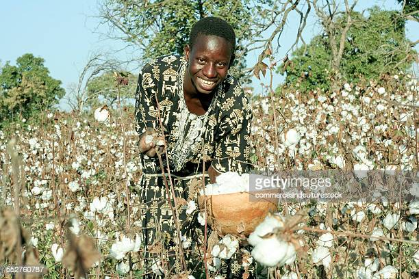 A smiling boy in a cotton field