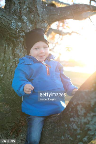 Smiling boy sitting on branch