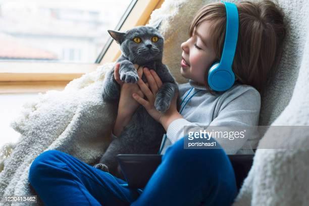 glimlachende jongen met kat die huis toe te schrijven aan pandemie blijft - alleen één jongen stockfoto's en -beelden