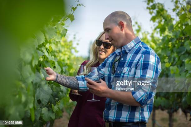 Smiling Couple Drinking Wine in Vineyard