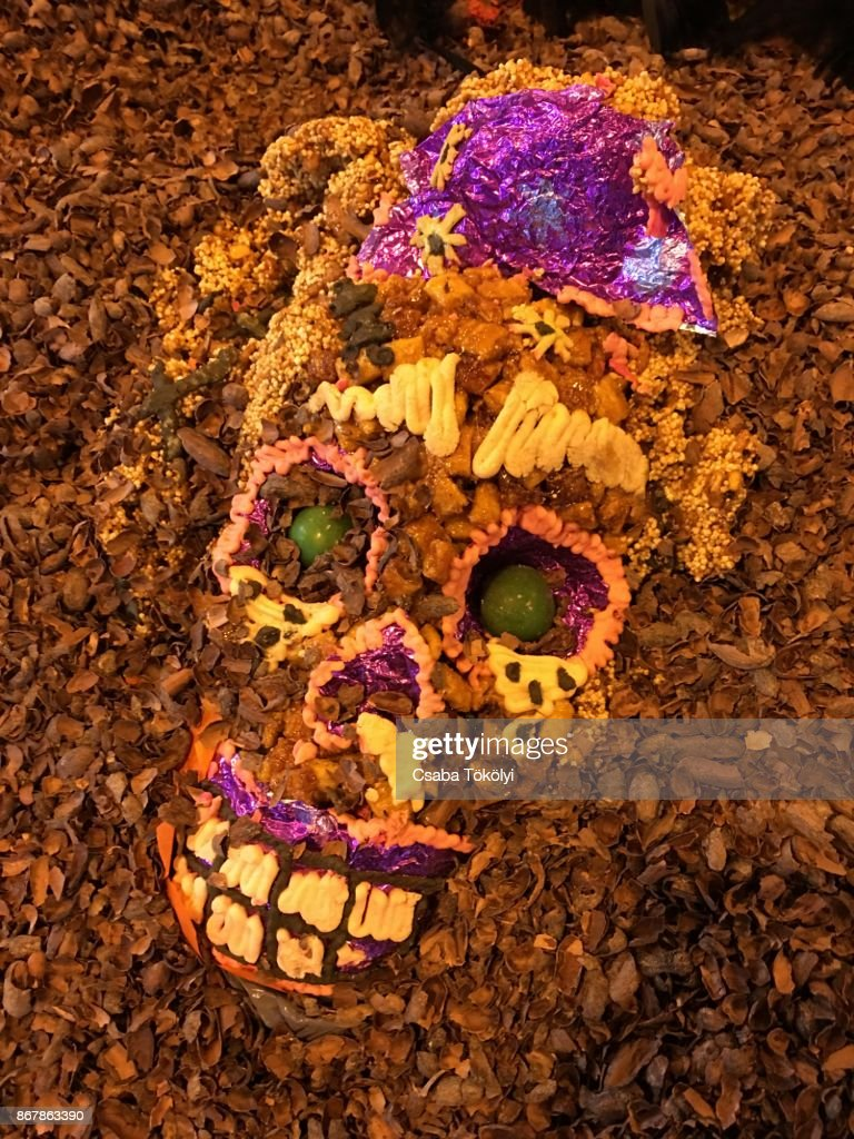 Smiling Dia De Los Muertos skull : Stock Photo