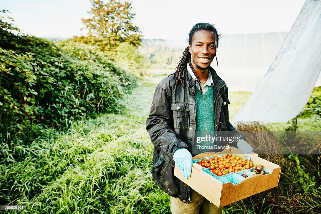 Smiling farmer holding box of organic tomatoes : Stock Photo