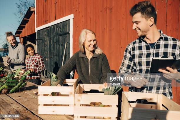 Smiling farmers arranging organic vegetables in crates outside barn