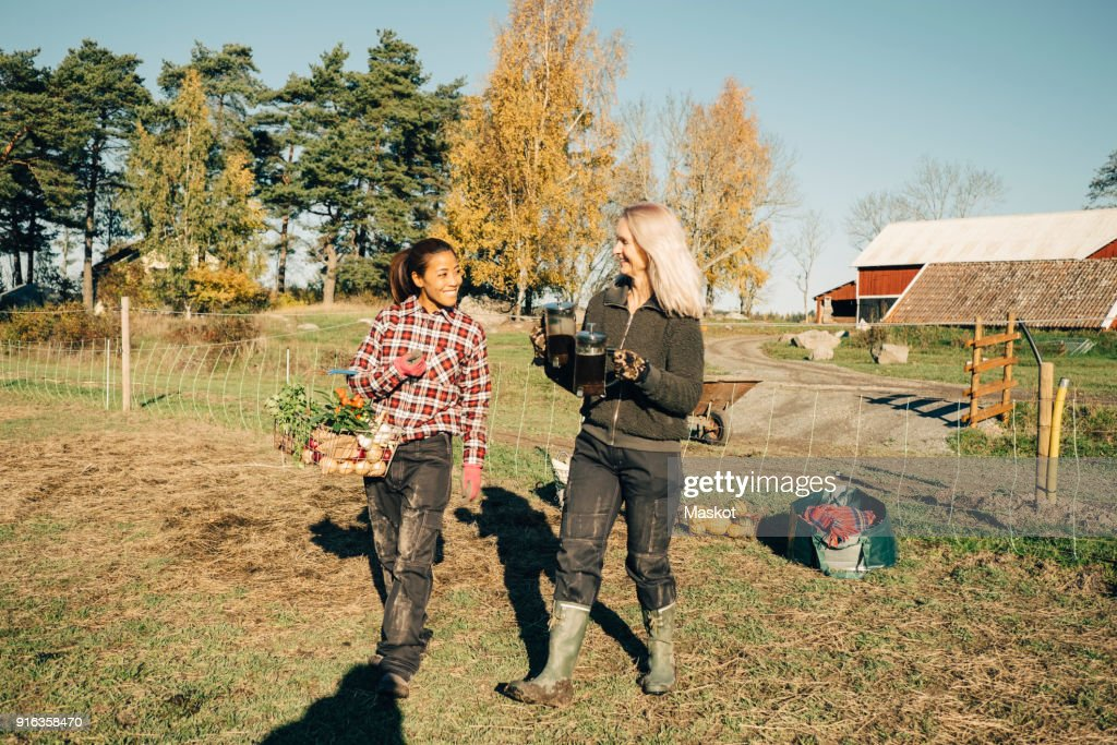 Smiling female farmers with vegetables and French press walking on field : Stock-Foto