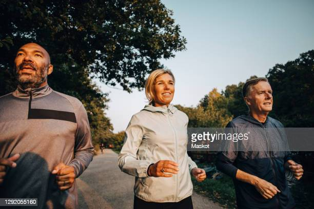 smiling female with friends looking away while jogging in park during sunset - sporting term stock pictures, royalty-free photos & images