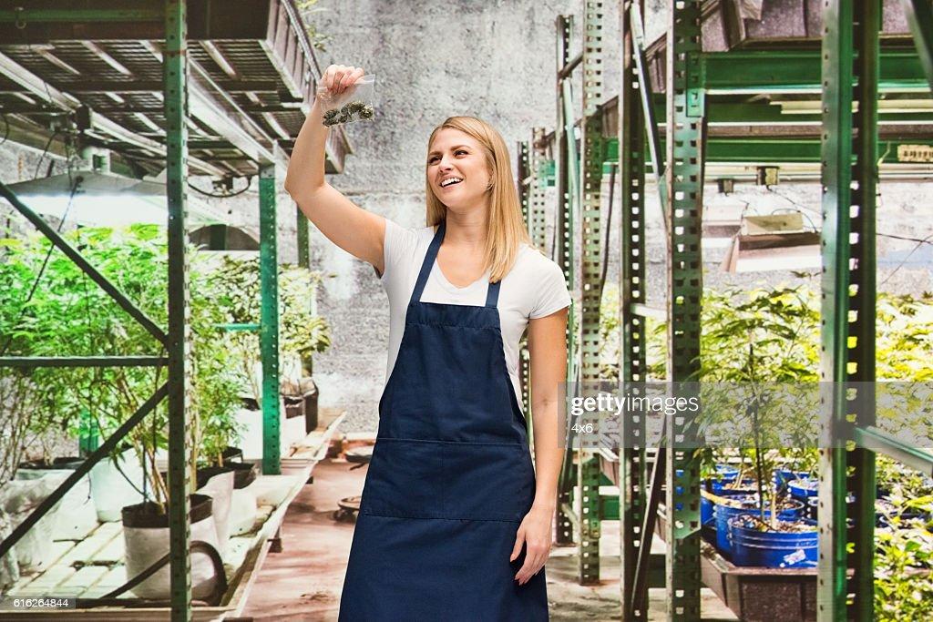 Smiling florist holding drug in marijuana plant : Stock Photo