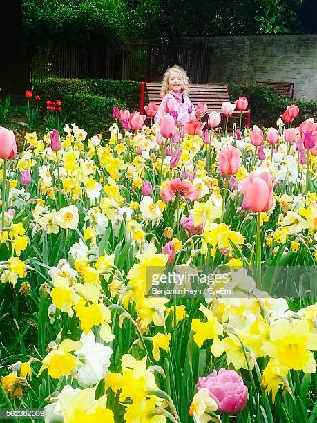 smiling girl at garden - tulips and daffodils stock pictures, royalty-free photos & images