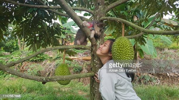 smiling girl by dog on fruit tree branch - durian stock pictures, royalty-free photos & images