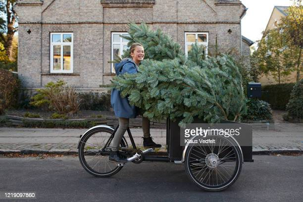 smiling girl with christmas tree on bicycle cart in city - christmas decoration stock pictures, royalty-free photos & images