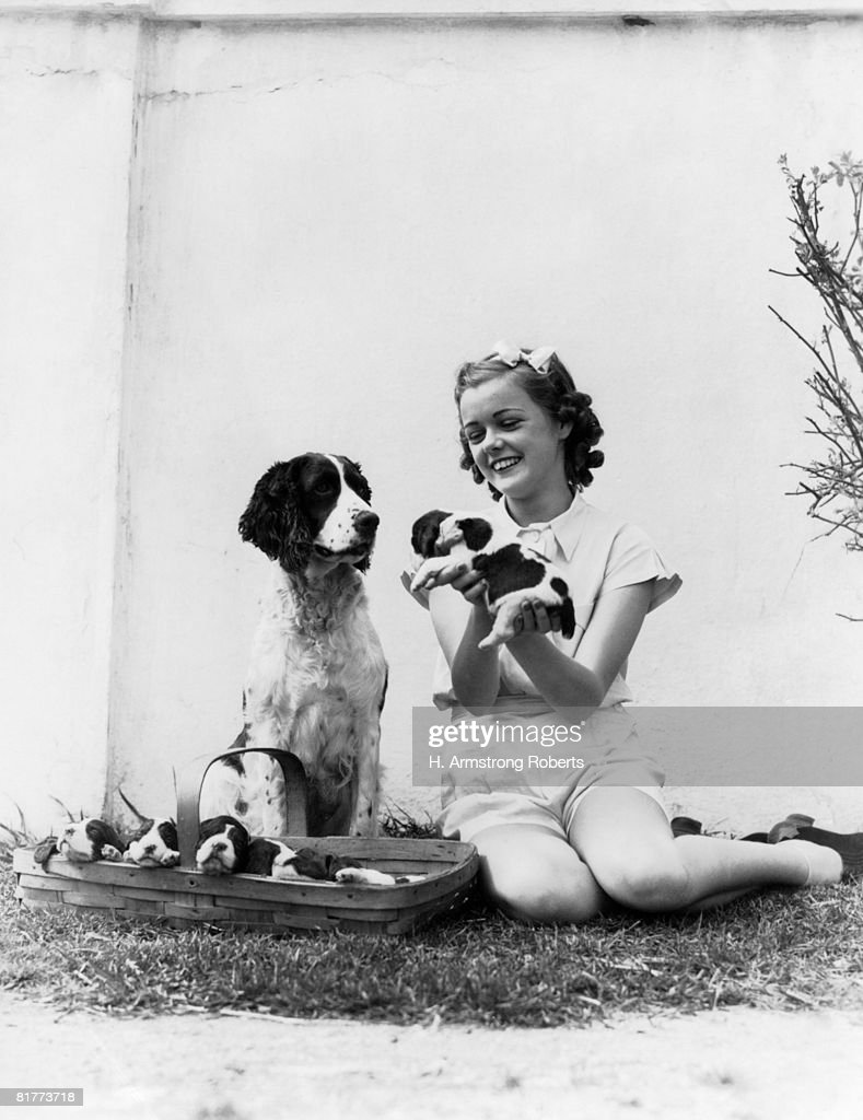 Smiling girl with dog and puppies. : Stock Photo