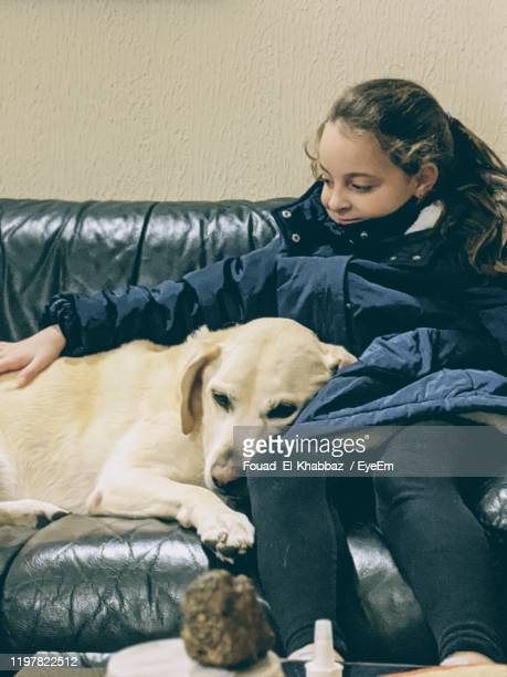 smiling girl with dog sitting on sofa at home - fouad el-khabbaz stock pictures, royalty-free photos & images