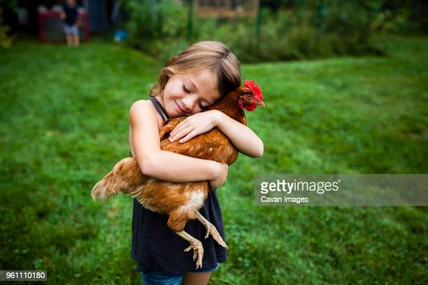 smiling girl with eyes closed holding hen while standing in yard - hen stock pictures, royalty-free photos & images