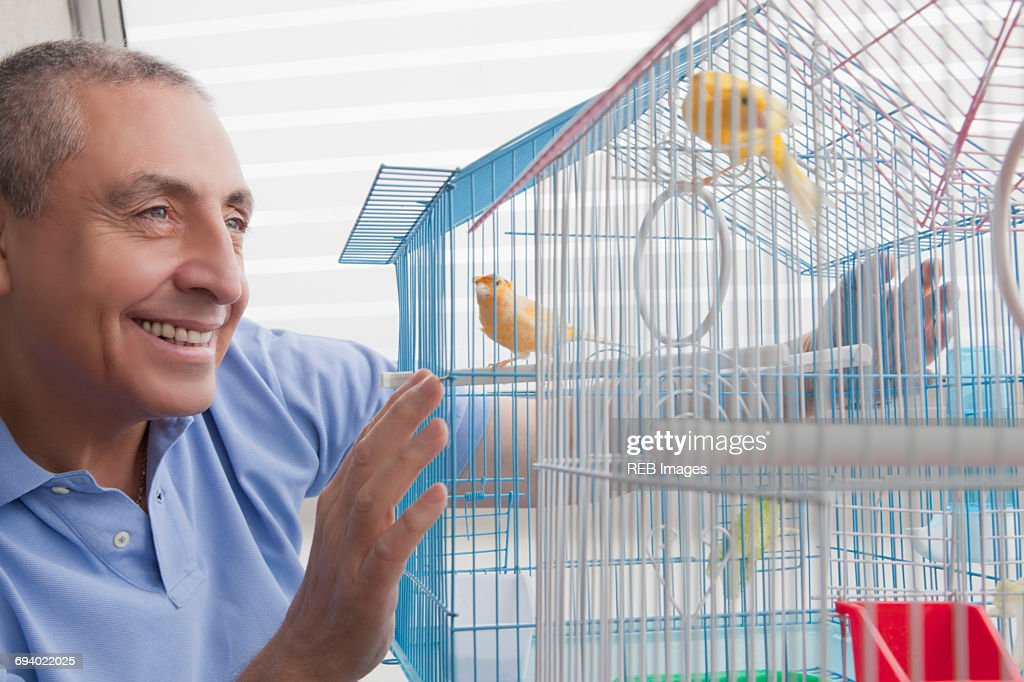 Smiling Hispanic man admiring birds in birdcage : Stock Photo