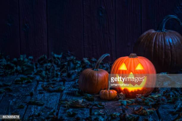 smiling jack o' lantern on old wooden porch in the moon light - happy halloween stock photos and pictures