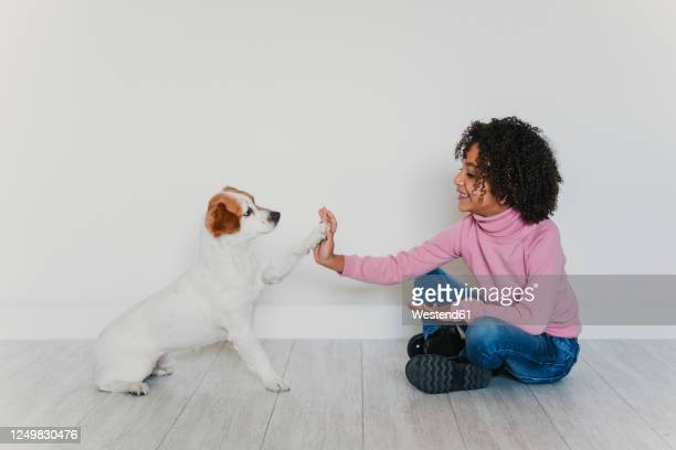 smiling little girl sitting on the floor with her dog giving paw - paw stock pictures, royalty-free photos & images