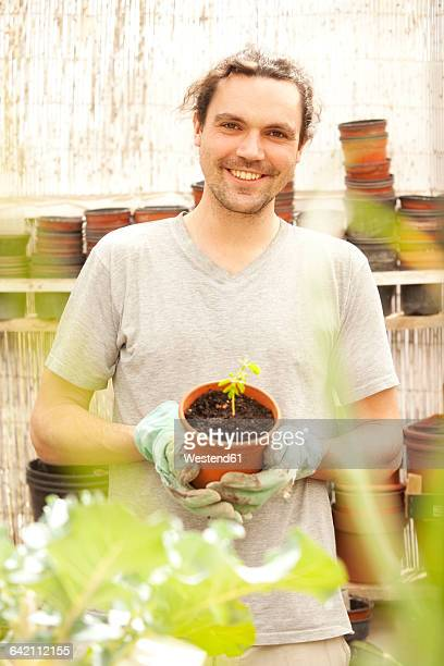 smiling man holding flowerpot with moringa seedling - moringa oleifera stock photos and pictures