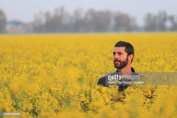 smiling man standing amidst oilseed rape field - oilseed rape stock pictures, royalty-free photos & images