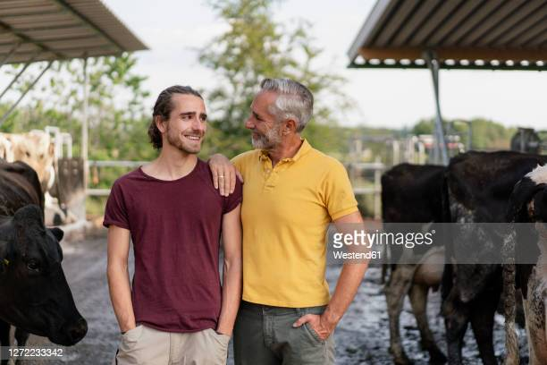 smiling mature farmer with adult son at cow house on a farm - successor stock pictures, royalty-free photos & images