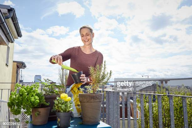 smiling mature woman caring for plants on balcony - balkon stock-fotos und bilder