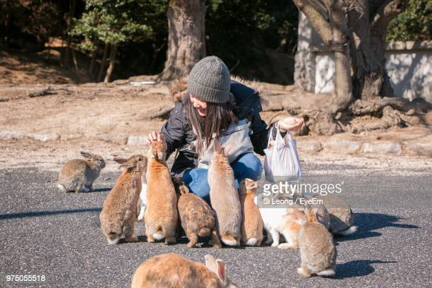 smiling mid adult woman feeding rabbit on road - lagomorphs stock pictures, royalty-free photos & images