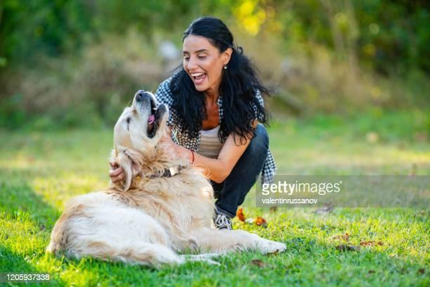 glimlachende medio volwassen vrouw die met haar gouden retriever op voortuin speelt - alleen één mid volwassen vrouw stockfoto's en -beelden