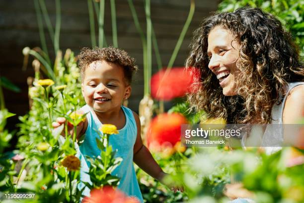 smiling mother and toddler daughter enjoying flowers growing in backyard garden - nature stock pictures, royalty-free photos & images