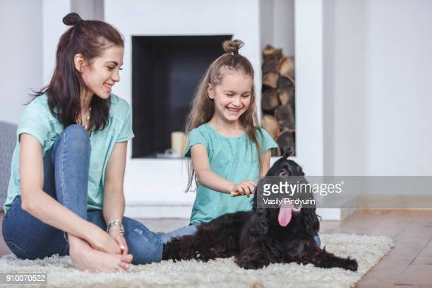 smiling mother looking at daughter brushing dog hair in living room at home - hairy women stock pictures, royalty-free photos & images