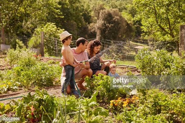 sourire les parents d'enfants ludiques en yard - jardin potager photos et images de collection