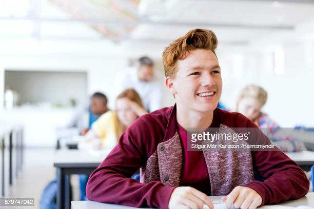 Smiling redhead male teenage student at school