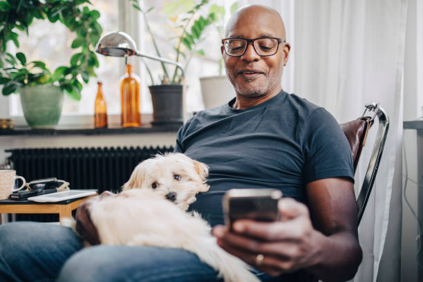 smiling retired senior male using smart phone while sitting with dog in room at home - people stock pictures, royalty-free photos & images